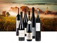 Những điều bạn nên biết về sản xuất rượu vang .